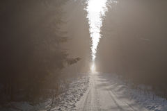 Straight ground road in snow Royalty Free Stock Photo