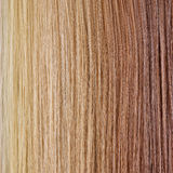Straight Hair Palette. Gradient Backgroun Royalty Free Stock Photo