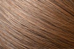 Straight light brown hair macro foto Royalty Free Stock Image