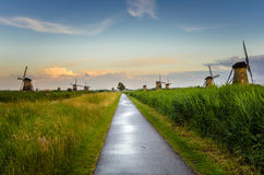 Straight Narrow Footpath at Sunset Stock Photos