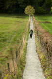 Straight, narrow path Stock Images