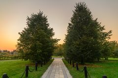 Path in the autumn park Royalty Free Stock Image
