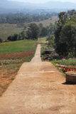 Straight path down the hill Stock Photos