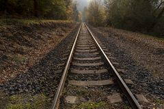 Straight rail tracks passing through the middle of the forest. In the autumn royalty free stock photo