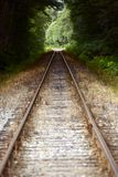 Straight Railroad Tracks. Through Forest. Traveling and Destinations Theme. British Columbia Railroad - Canada. Transportation Photo Collection Royalty Free Stock Photos