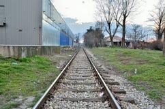 Straight railroad tracks Stock Image