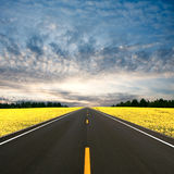 Straight Road Stock Images