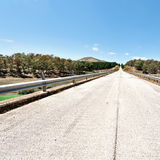 Straight Road. Straight Asphalt Road between Spring Forests of Sicily Royalty Free Stock Images