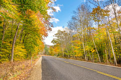 Straight Road in Autumn Stock Photography
