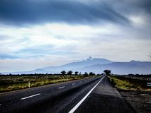 Straight road with black asphalt royalty free stock images