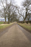 Straight road in countryside Royalty Free Stock Images