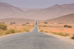 Straight road through the desert in Morocco, Africa Stock Images