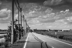 Straight road. Electric cables and poles along a straight tarmac road in black and white Royalty Free Stock Photo