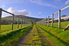 Straight Road between fenced fields. Straight Gravel Road between fenced fields leading toward a gate with a hill and blue sky in the Background Stock Images