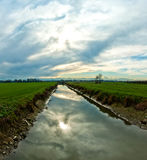 Creek in Italian Po valley Stock Photos