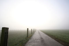 Straight road into light. Country road with fence posts heading toward sunrise in thick fog Royalty Free Stock Image