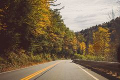 Straight road in the middle of a beautiful forest with yellow leaf trees on a sunny day. A straight road in the middle of a beautiful forest with yellow leaf stock photo