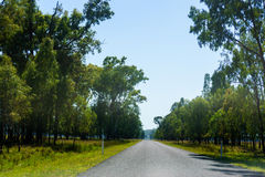 Straight road in rural Queensland Royalty Free Stock Photography