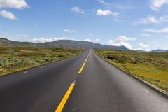 Straight road to Oslo Royalty Free Stock Photo