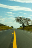 Straight road touching the sky Stock Image