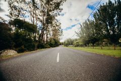Straight road with trees in both sides. High speed concept. Royalty Free Stock Image