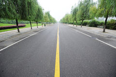Straight road with willows. Straight road with trees background Stock Images