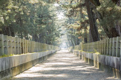 The straight walkway in front of the historical Horyu Ji Royalty Free Stock Photo