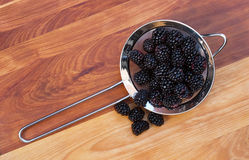 Strainer with Blackberries Stock Image