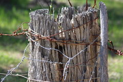 Strainer Fence Post with Wire Royalty Free Stock Photos