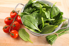 Strainer with spinach leaves and tomatoes Royalty Free Stock Photography