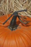 Strainge pumpkin stem with hay Stock Photography