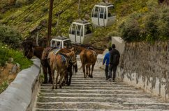 Strairs and donkey in santorini. Greece Royalty Free Stock Photography