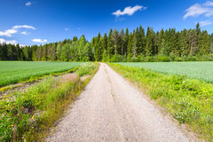 Strait empty rural road perspective under blue sky Royalty Free Stock Photography