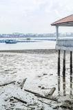 Straits of Tebrau. During low tide royalty free stock photo