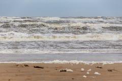 Strand†‹â€ ‹schuim Egmond aan Zee, Nederland stock foto