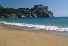 strandöken Royaltyfri Foto