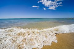 strandömargarita Fotografering för Bildbyråer