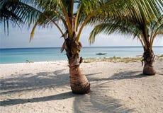 strandöparadis philippines Arkivbilder