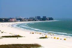 strandöskatt Arkivbilder