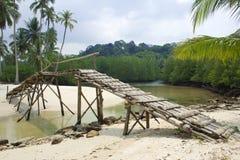 strand Arkivbild