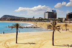 strand 3 Royaltyfri Bild