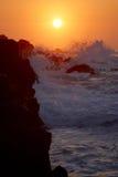 strand Royaltyfri Foto