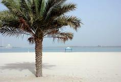 Strand Abu Dhabi Stockbilder