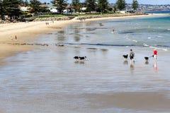 Strand in Adelaide Lizenzfreie Stockfotografie