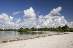 Strand auf Biscayne-Bucht stockbild