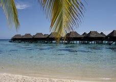 Strand auf Moorea stockbilder