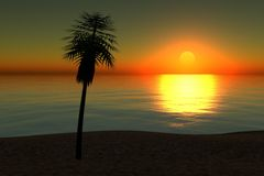 Strand auf Sonnenuntergang stockbild