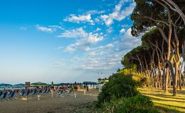 Strand av den Roseto deglien Abruzzi, Abruzzo, Italien Den Roseto deglien Abruzzi är också bekant som den rosa `en för `-Lido del Fotografering för Bildbyråer