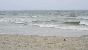 Strand av det baltiska havet Arkivbilder