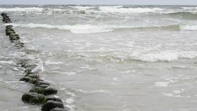 Strand av det baltiska havet Royaltyfri Foto